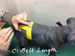 Measurement C